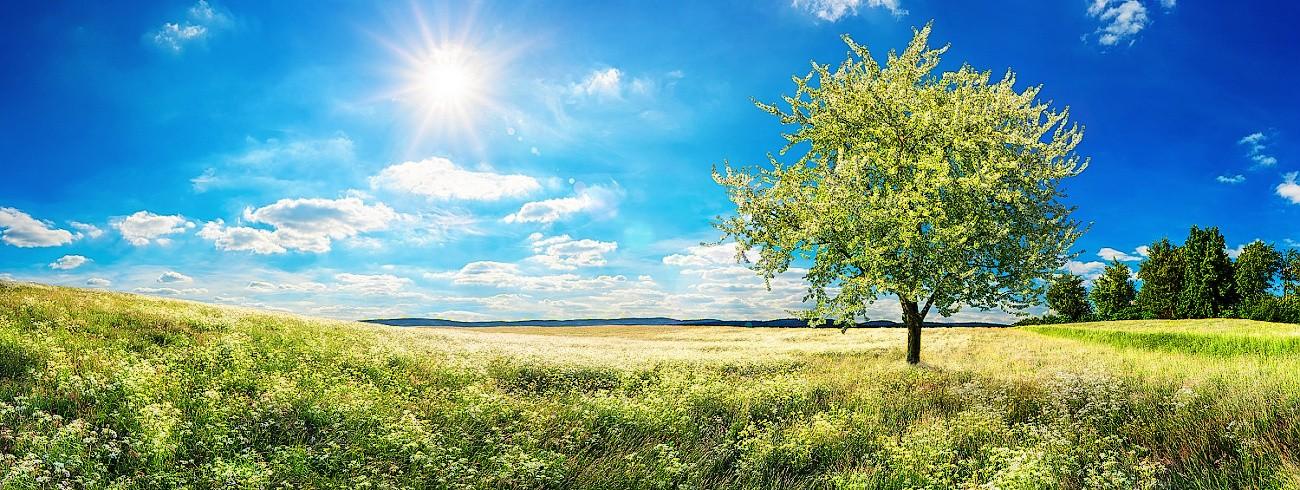 Šumava léto